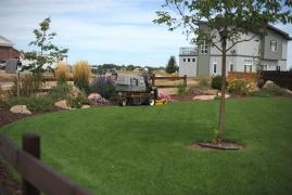 Walker Lawn Mower Edge Cutting